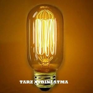 tarz_aydinlatma_edison_rustik_ampul_t45_resim2